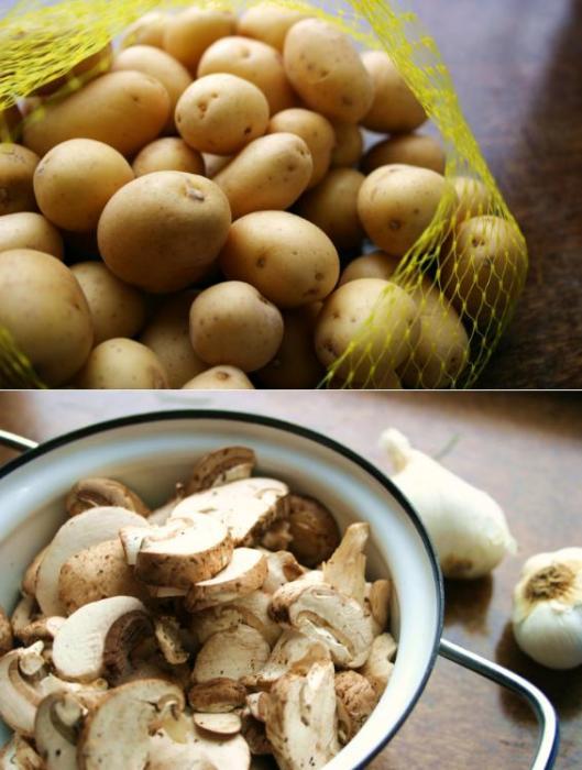 Potato Mushroom Soup (Bramboracka) Recipe